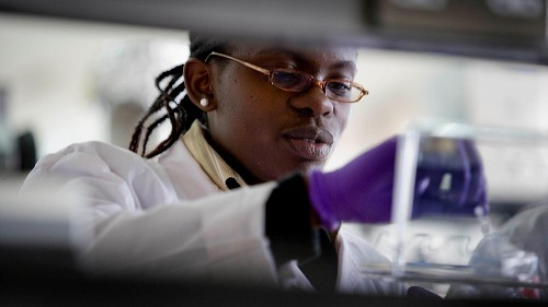 The success of scientists' funding requests seems linked to their race