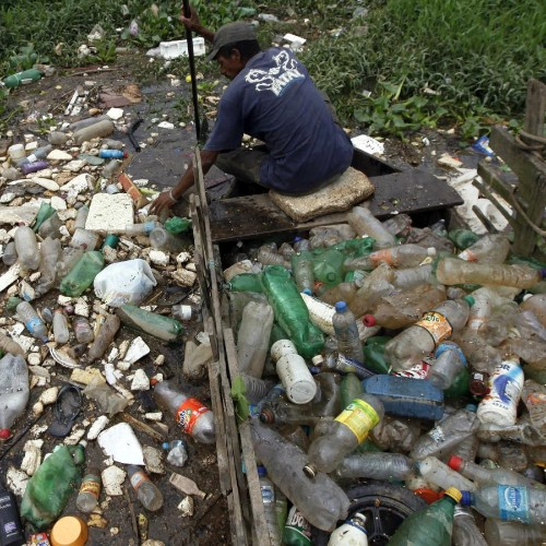"""""""Nature can surprise us"""": There's a new species of bacteria that eats plastic"""