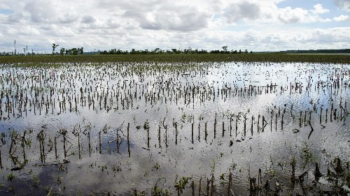Midwest floods linked to climate change are devastating US farms