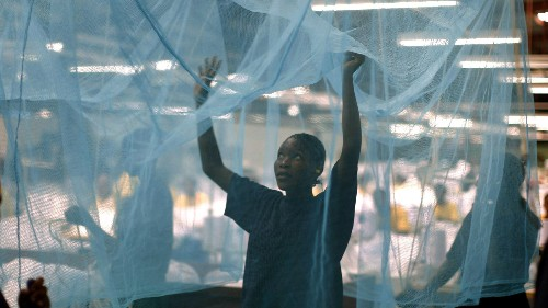 Scientists in South Africa have discovered a compound that could end malaria