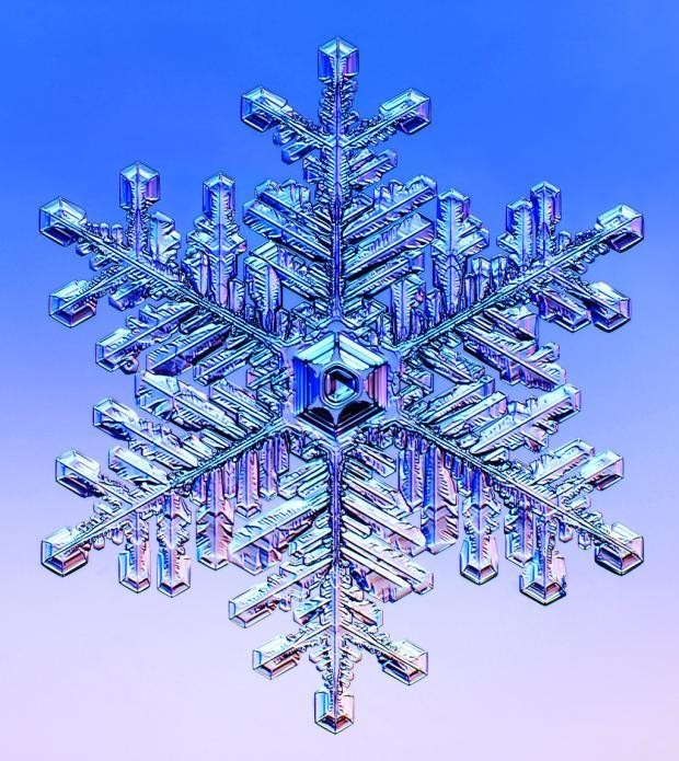 Meet the scientist who makes identical snowflakes