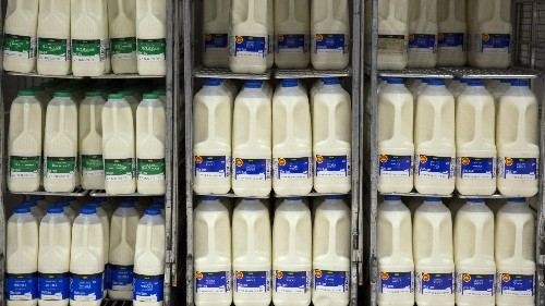 US scientists quadrupled milk's shelf life using Soviet technology
