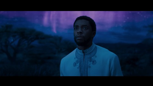 """A torture for the eyes"": Chinese moviegoers think Black Panther is too black"