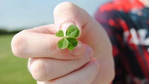 A Cornell economist who studies luck says the more you acknowledge good fortune, the better off you are