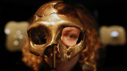 Neanderthals mated with European humans and it made their immune systems weaker