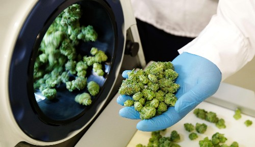 Cannabis companies are consolidating into alcohol and tobacco conglomerates