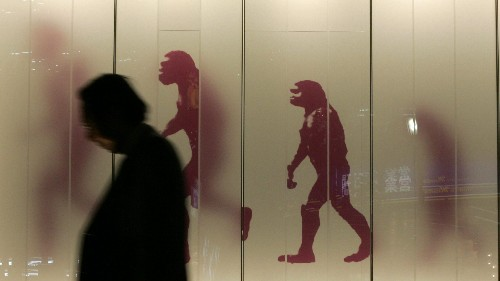 Why that popular evolution of man chart is all wrong