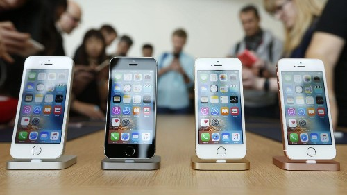 Apple's iPhone SE has reached the same, exalted evolutionary pinnacle as the cockroach