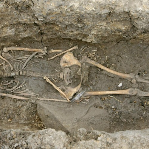 How Europeans became tall and fair-skinned 8,500 years ago