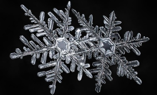 A photographer's scientific approach to shooting snowflakes reveals stunning geometric variety