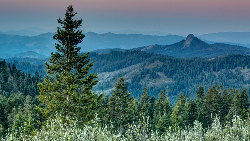 Hiking the Pacific Crest Trail didn't cure my depression—but it did change my life