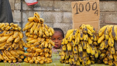 How the global banana industry is killing the world's favorite fruit