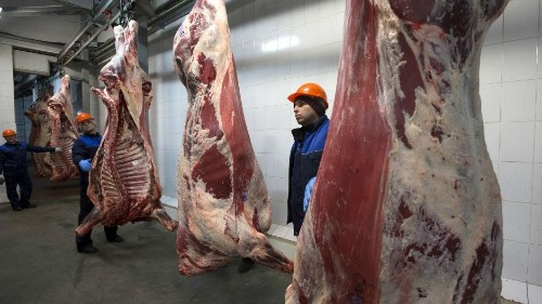 Eating meat is worse for the environment than driving to work