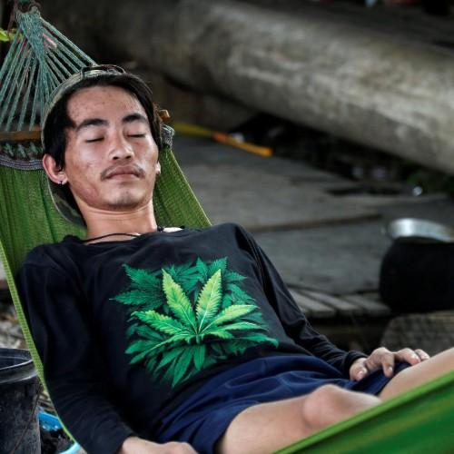 Are cannabinoids a good sleep aid?