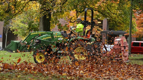 More brave towns are putting a stop to the tyranny of leaf blowers