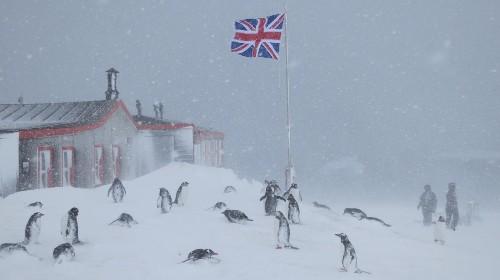 Antarctica needs a postmaster: Must love penguins
