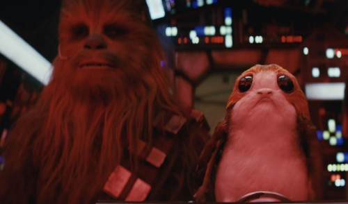 The porgs in Star Wars are a perfect example of natural selection
