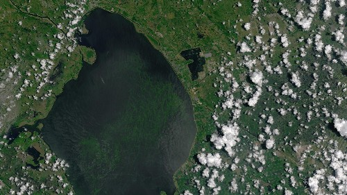 Parts of Florida are in a state of emergency over a toxic algae bloom that can be seen from space