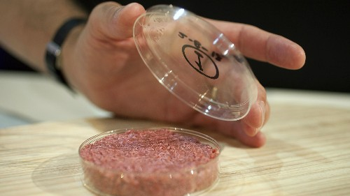 Lab-grown meat is about to go global, and one firm is feverishly paving the way