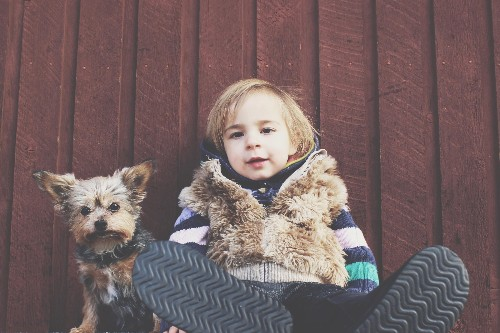 The dog training strategies that work on kids