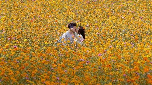 How do we know when we've fallen in love? My informal survey reveals three big patterns
