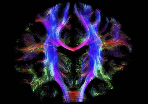 """A """"time slice"""" theory of consciousness suggests we're not continually aware of our surroundings"""