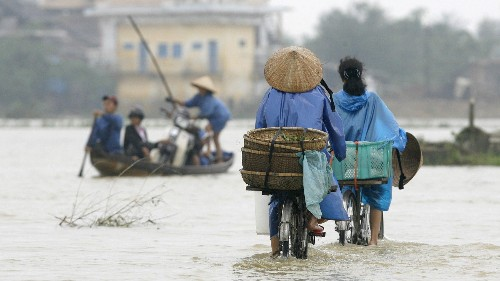 How Vietnamese women are fighting back against climate change