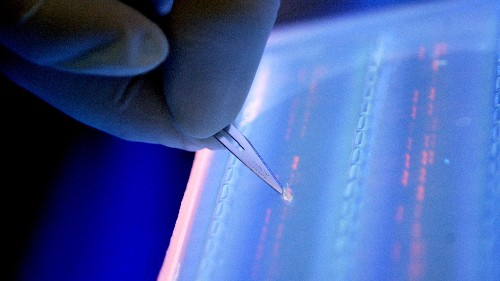 Scientists say all the world's data can fit on a DNA hard drive the size of a teaspoon