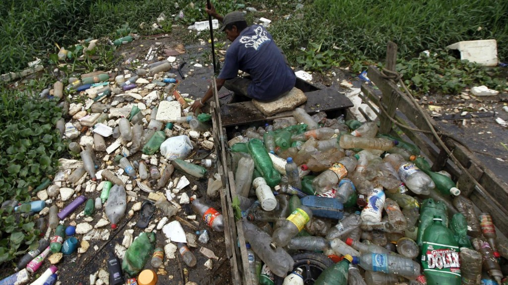 """Nature can surprise us"": There's a new species of bacteria that eats plastic"