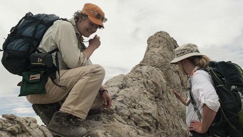 Women paleontologists are donning fake beards because of sexism