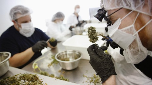 Medical marijuana in the US should be governed by science, not politics