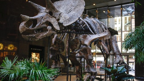 Are dinosaur fossils minerals? Millions ride on court's decision