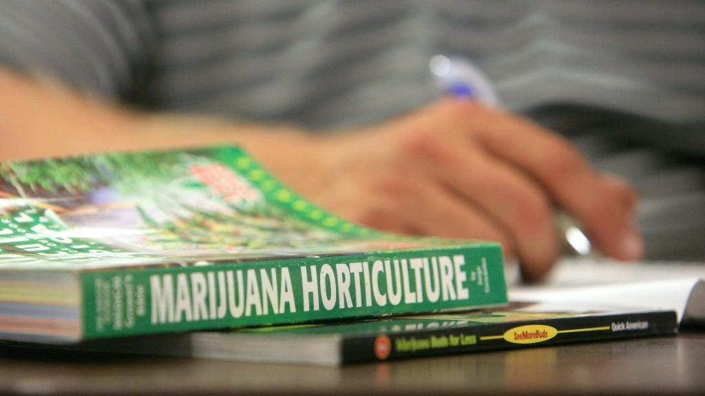 Cannabis - Magazine cover