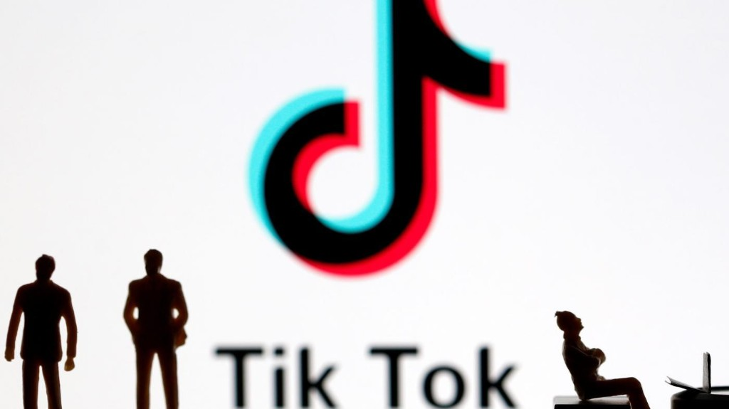 India's TikTok stars can survive the ban—if they diversify