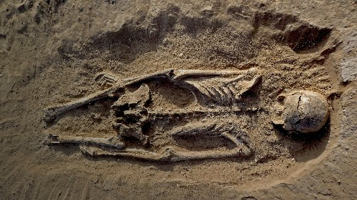 Are human beings innately violent? The oldest massacre ever discovered adds more proof