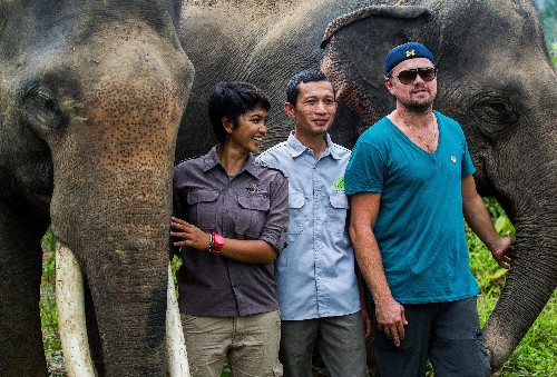 Leonardo DiCaprio shared his Indonesian vacation pics to highlight palm oil's harm to wildlife