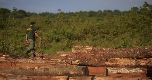 Can deforestation be stopped?