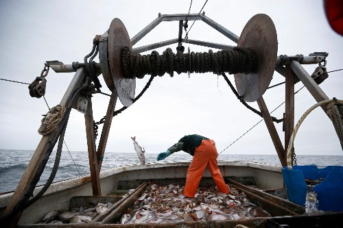 The way the world catches fish defies all economic logic
