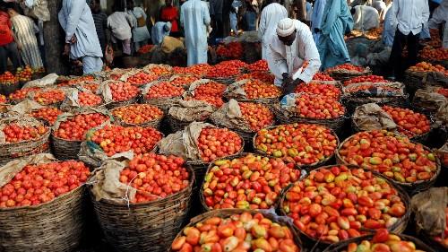FarmCrowdy raises $1 million from Techstars, Social Capital, Cox for crowdfarming in Nigeria