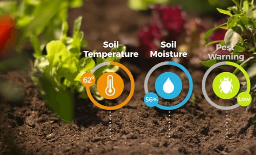Can the Internet of Things give you a green thumb?