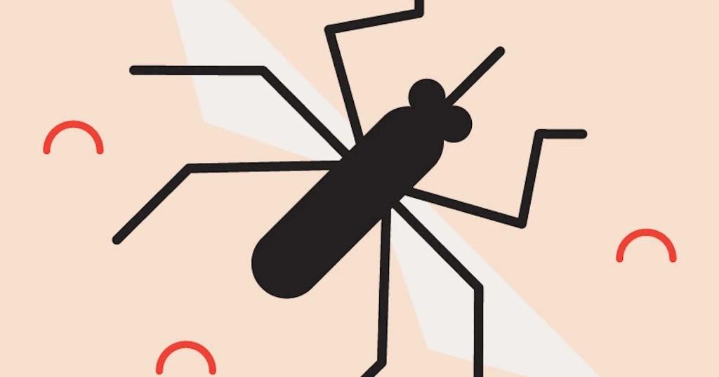 Was hilft gegen Mücken? 8 Produkte zur Vorbeugung Behandlung von Stichen