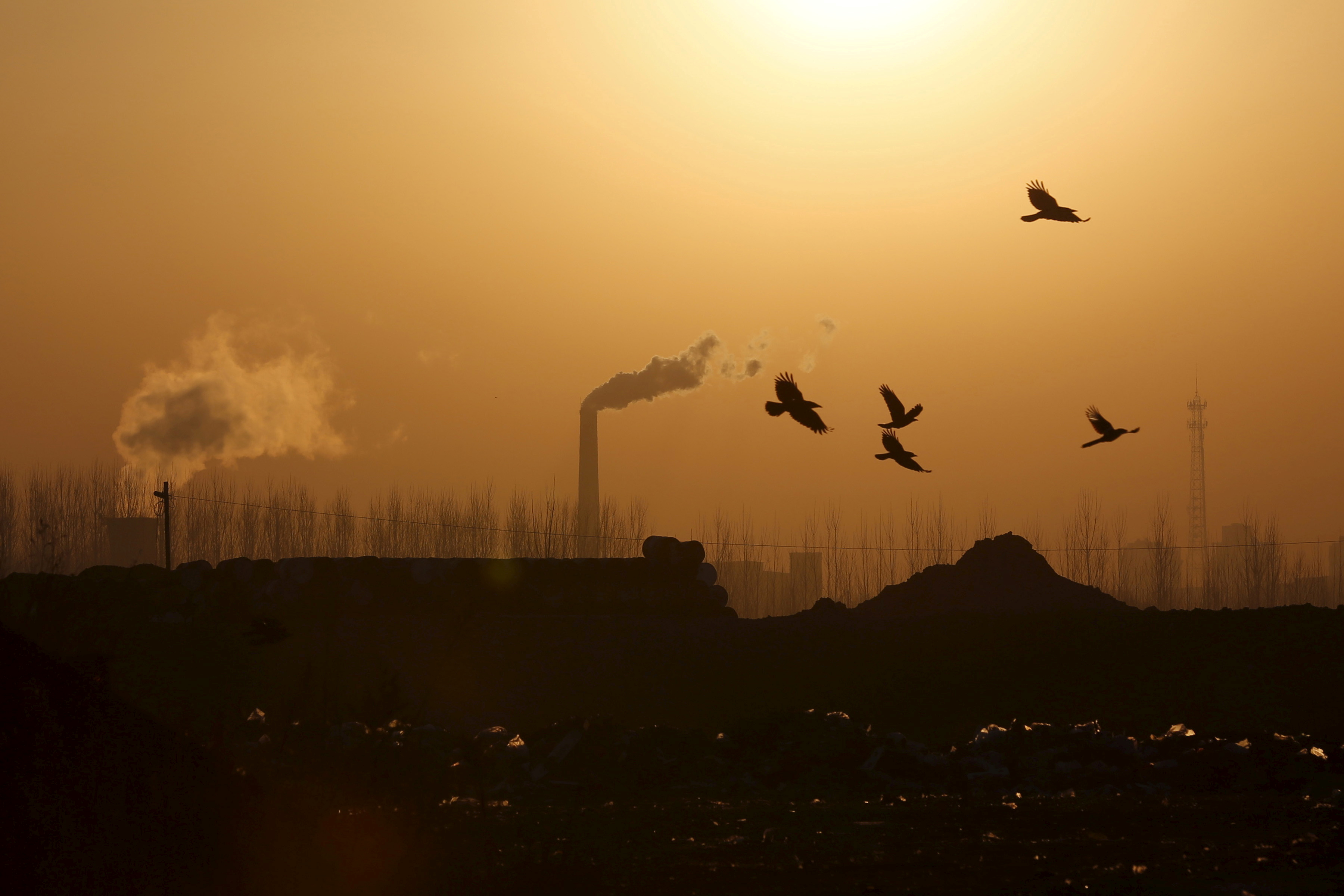 Turning blue: China Inc holds breath as Beijing eyes smog-free skies for National Day