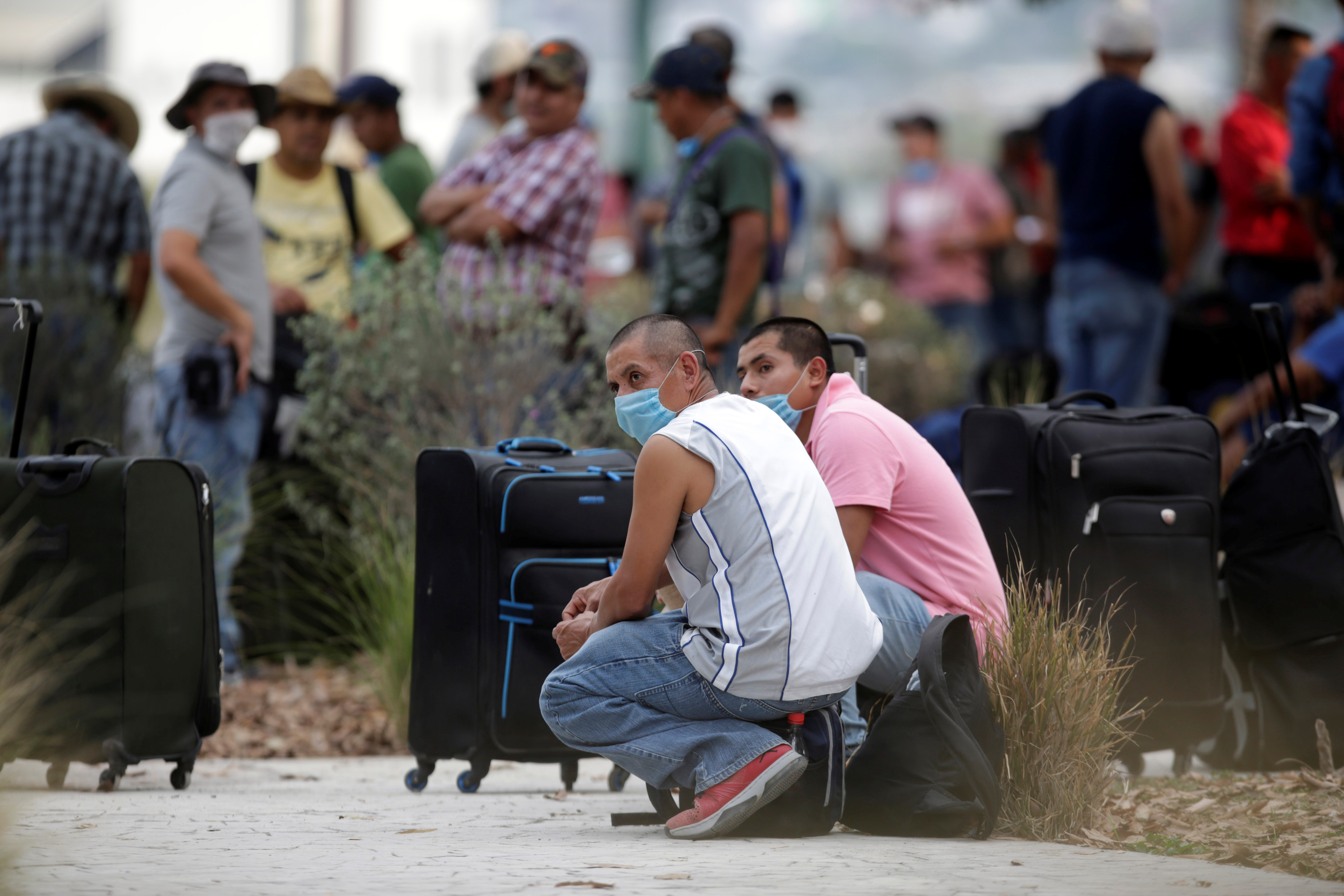 'The watermelons will rot:' U.S. visa confusion in Mexico keeps out agriculture workers