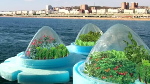 Floating farm  design could see vegetables grown at sea | Reuters.com