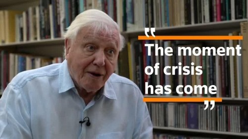 'The moment of crisis has come': naturalist Attenborough on climate change | Reuters Video