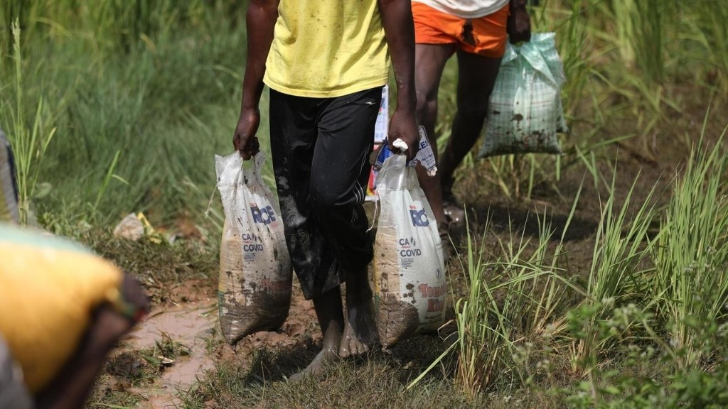 Nigeria: un nouveau centre d'aide alimentaire pillé à Abuja