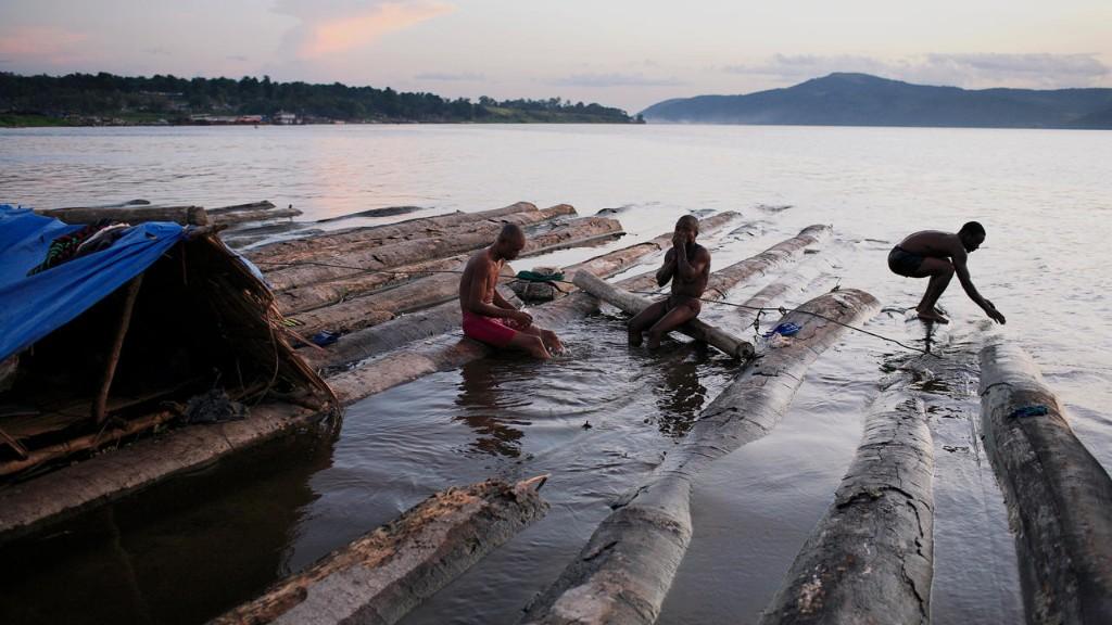 Chronique des matières premières - Les pays d'Afrique centrale veulent interdire les exportations de bois brut en 2022