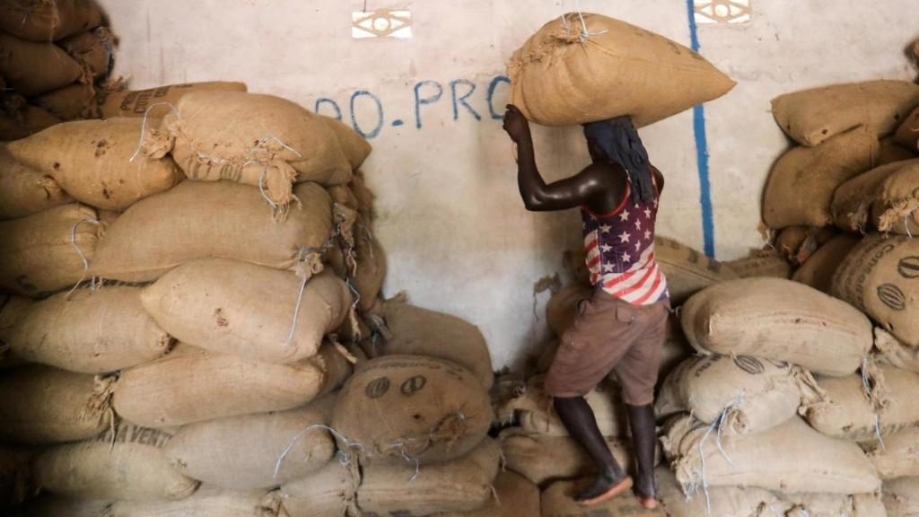 Afrique économie - Côte d'Ivoire [Série]: Coup de pouce du prix payé aux planteurs de cacao