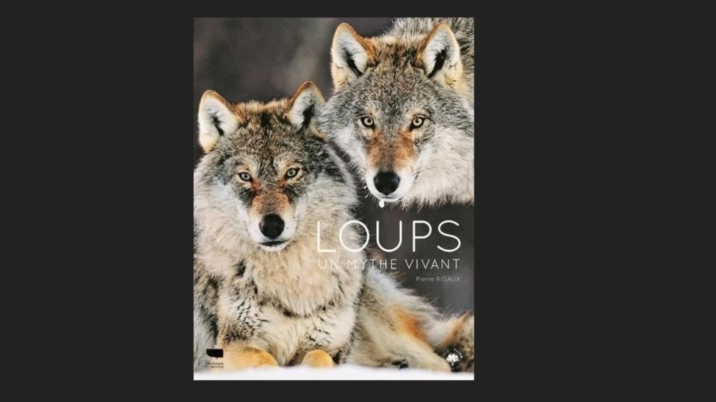 Autour de la question - Qui sont les loups ?