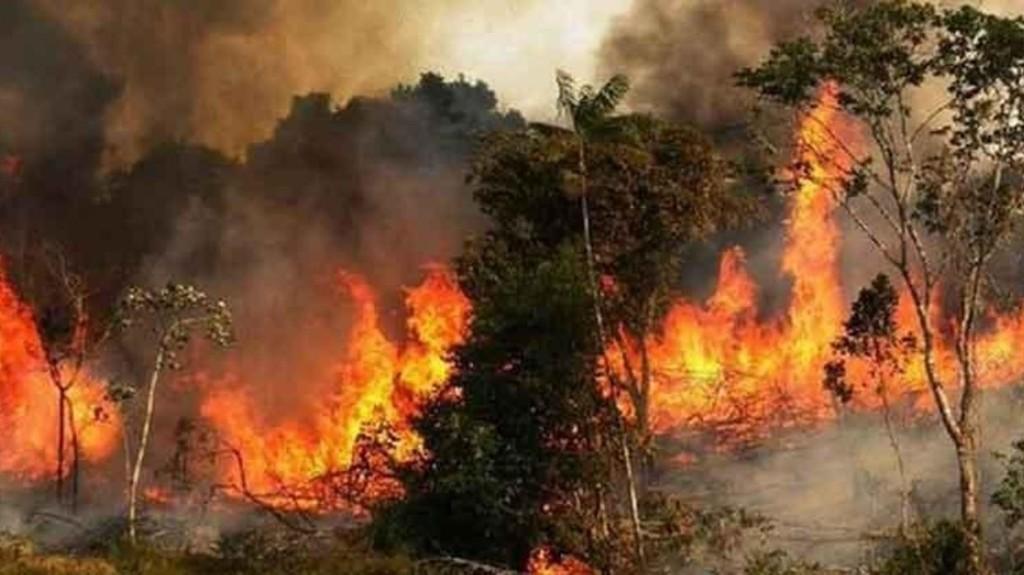 آتش غفلت و بی توجهی بر جان زاگرس: آتش سوزی جنگل های خائیز به بهبهان رسید؛ یکی از نیروهای اطفای حریق کشته و ٣ نفر مصدوم شدند